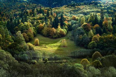 Рилска гора.